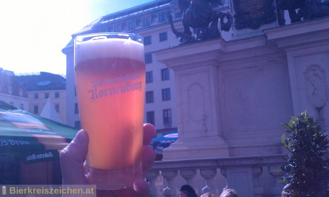 Foto eines Bieres der Marke Korneuburger Privat aus der Brauerei Biermanufaktur Korneuburg