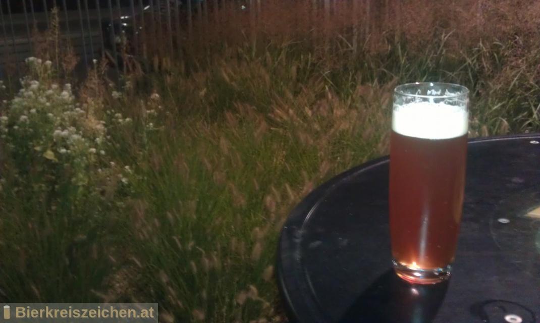 Foto eines Bieres der Marke Bierzauberei Triple-Magnum-Super-Bitter-Quassia-Ale aus der Brauerei Bierzauberei®