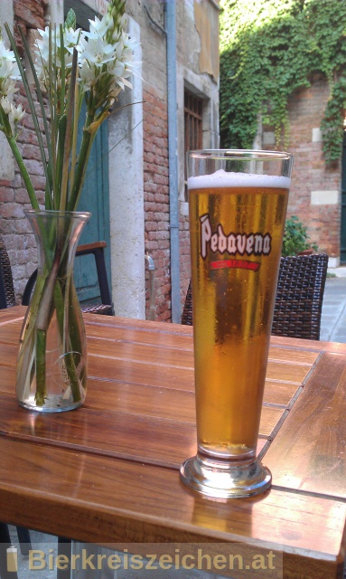 Foto eines Bieres der Marke Birra Pedavena aus der Brauerei Birreria di Pedavena