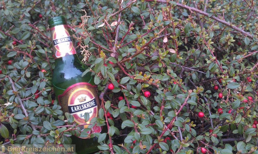Foto eines Bieres der Marke Karlskrone naturtrüber Grapefruit-Radler aus der Brauerei Tigast Handelsgesellschaft