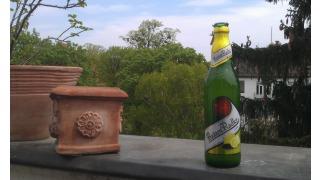 Zlatý Bažant - Radler citrón