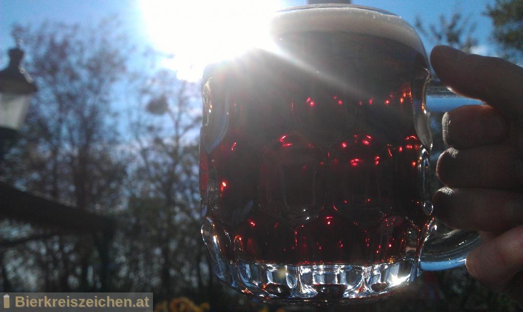 Foto eines Bieres der Marke Grieskirchner Export Dunkel aus der Brauerei Brauerei Grieskirchen