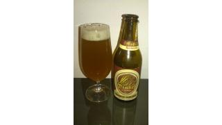 Dinkel Bier