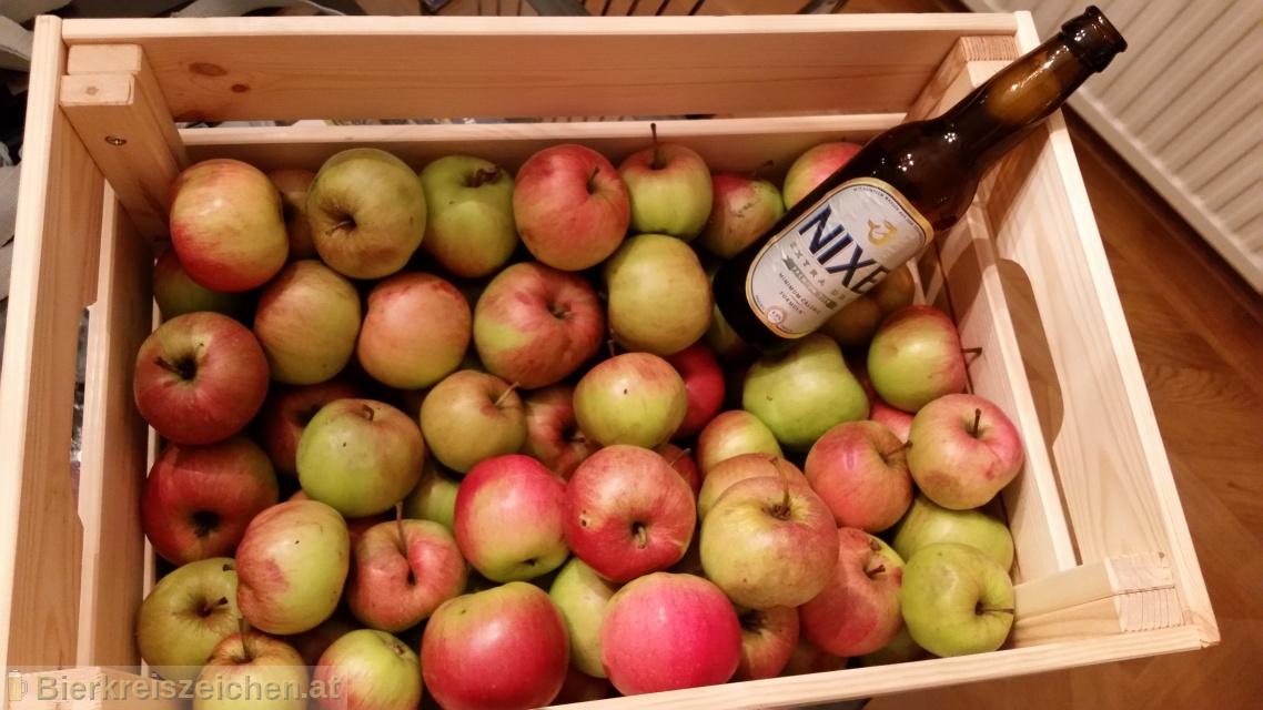 Foto eines Bieres der Marke Nixe Extra Dry aus der Brauerei Nixe