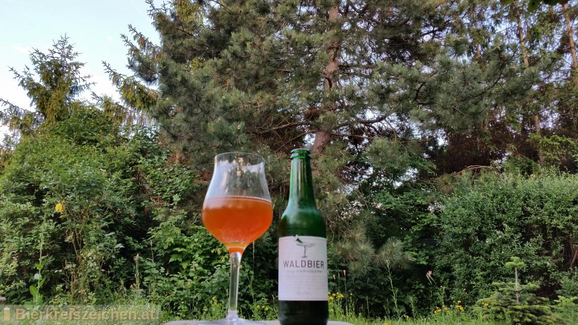 Foto eines Bieres der Marke Kiesbye's Waldbier 2014: Schwarzkiefer aus der Brauerei Kiesbye