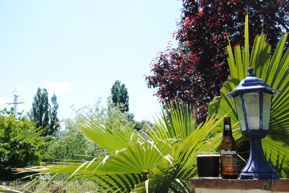 Foto eines Bieres der Marke Mahou Negra aus der Brauerei Mahou S.a.