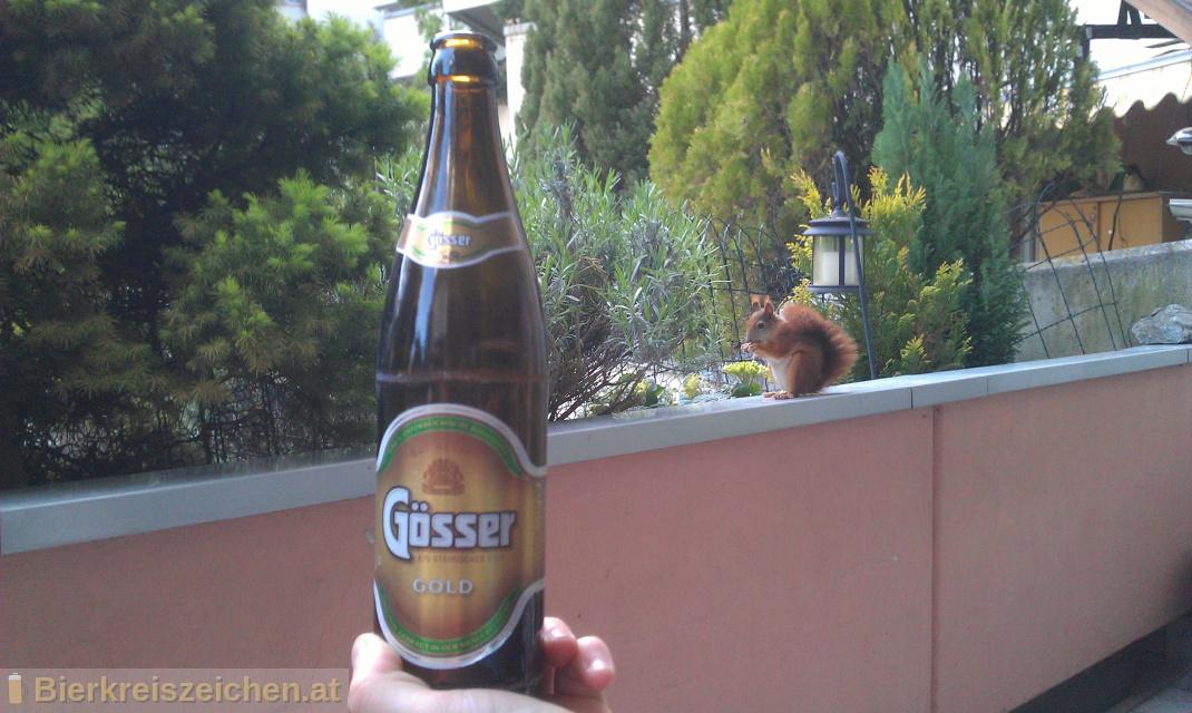 Foto eines Bieres der Marke Gösser Gold aus der Brauerei Brauerei Göss