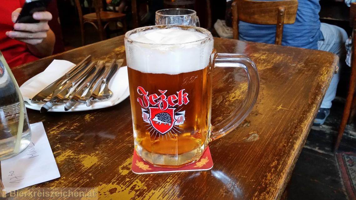 Foto eines Bieres der Marke Ježek 11° aus der Brauerei Pivovar Jihlava