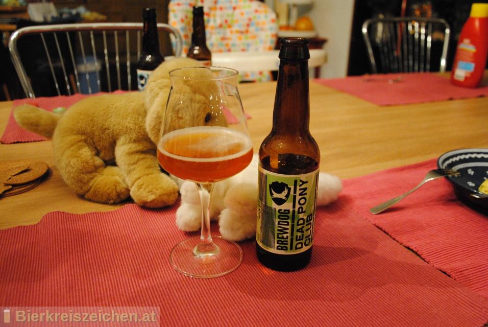 Foto eines Bieres der Marke Dead Pony Club aus der Brauerei Brewdog