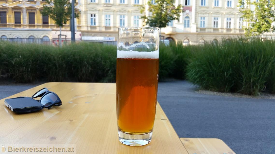 Foto eines Bieres der Marke Batzen Vienna - Hell aus der Brauerei Batzenbräu
