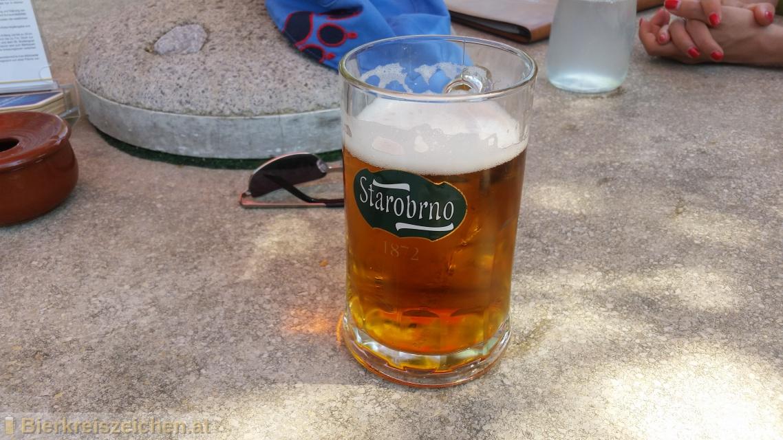 Foto eines Bieres der Marke Starobrno Řezák (Premium Lager) aus der Brauerei Pivovar Starobrno