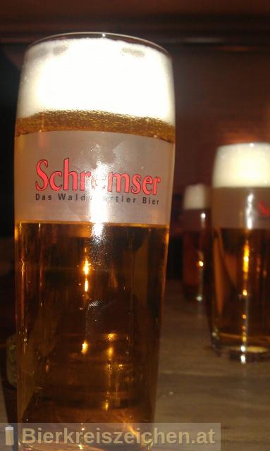 Foto eines Bieres der Marke Schremser Premium aus der Brauerei Brauerei Schrems