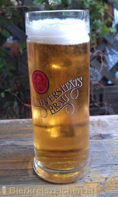 Foto eines Bieres der Marke Magister Märzen (Universitätsbräuhaus) aus der Brauerei Stiftsbrauerei Schlägl