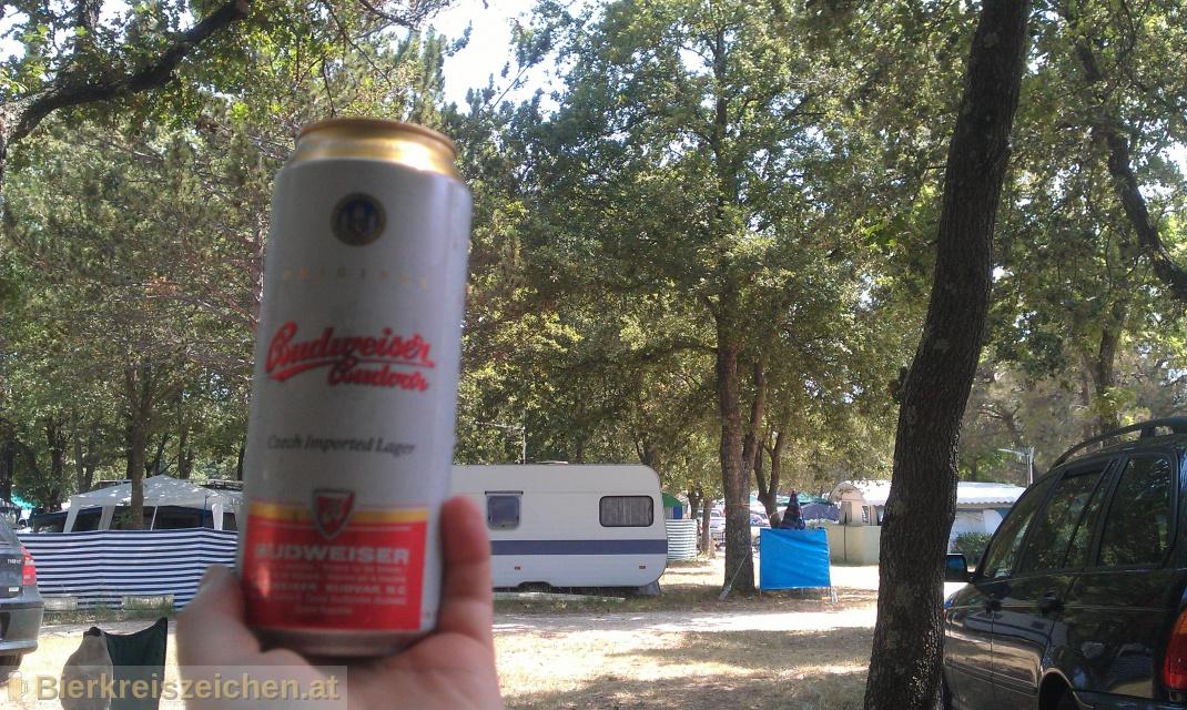 Foto eines Bieres der Marke Budweiser Original aus der Brauerei Budweiser Budvar