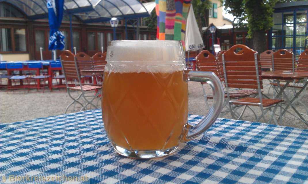 Foto eines Bieres der Marke Puntigamer Zwickl aus der Brauerei Brauerei Puntigam