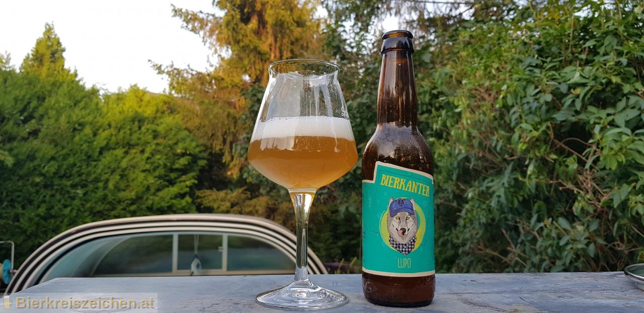 Foto eines Bieres der Marke Lupo aus der Brauerei Bierkanter