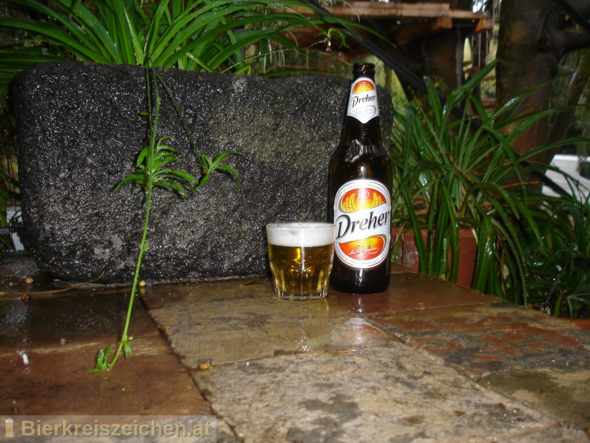 Foto eines Bieres der Marke Dreher aus der Brauerei Heineken Italia S.p.A