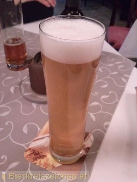 Foto eines Bieres der Marke Hofstettner Kübelbier aus der Brauerei Brauerei Hofstetten