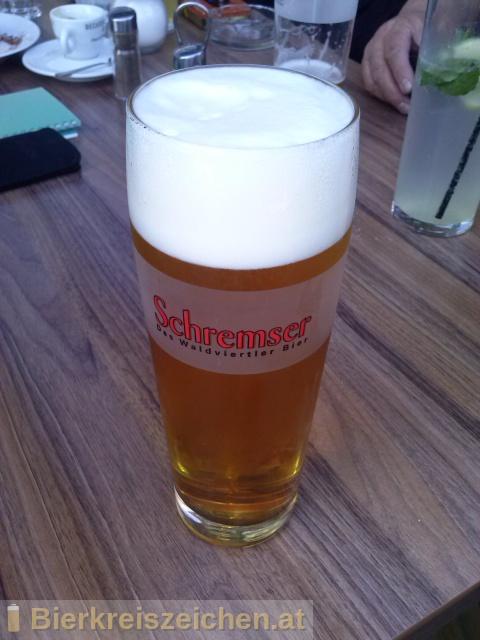 Foto eines Bieres der Marke Schremser Pils aus der Brauerei Brauerei Schrems