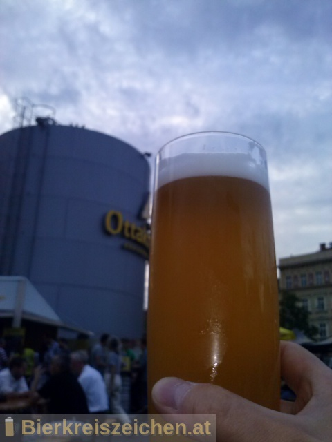 Foto eines Bieres der Marke Sali-Weizen aus der Brauerei TU München - Weihenstephan