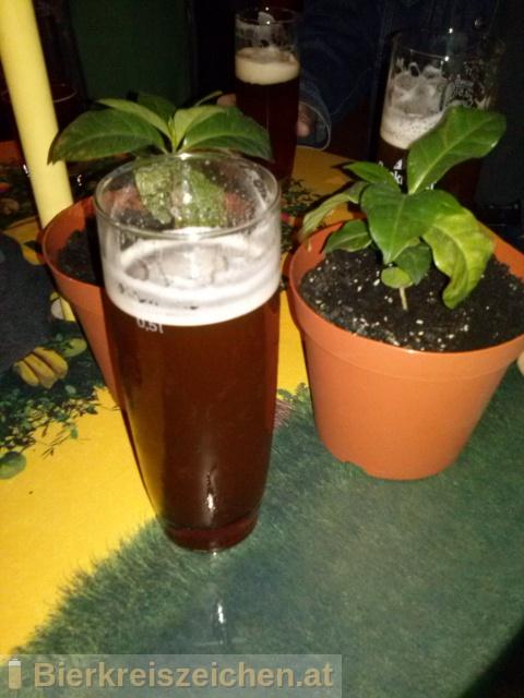 Foto eines Bieres der Marke Bierzauberei California IPA aus der Brauerei Bierzauberei®