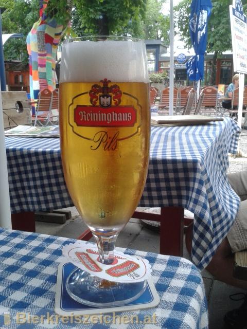 Foto eines Bieres der Marke Reininghaus Pils aus der Brauerei Brauerei Puntigam