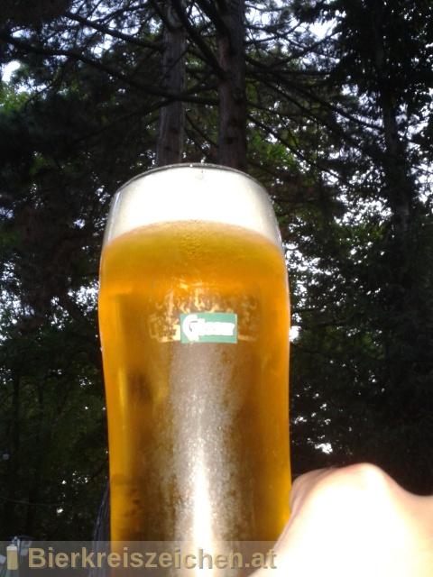 Foto eines Bieres der Marke Gösser Spezial aus der Brauerei Brauerei Göss