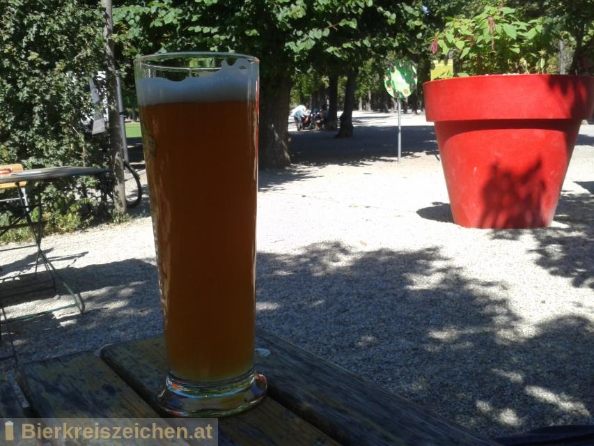 Foto eines Bieres der Marke Passauer Weiße aus der Brauerei Brauerei Innstadt