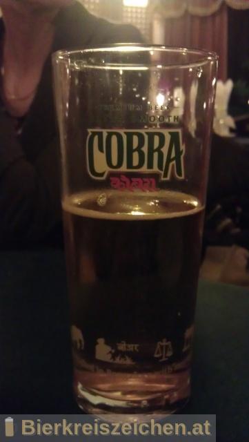 Foto eines Bieres der Marke Cobra Premium Beer aus der Brauerei Molson Coors Brewing Company (UK) Limited