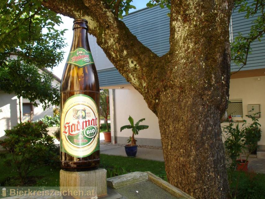 Foto eines Bieres der Marke Hadmar Bio aus der Brauerei Bierwerkstatt Weitra