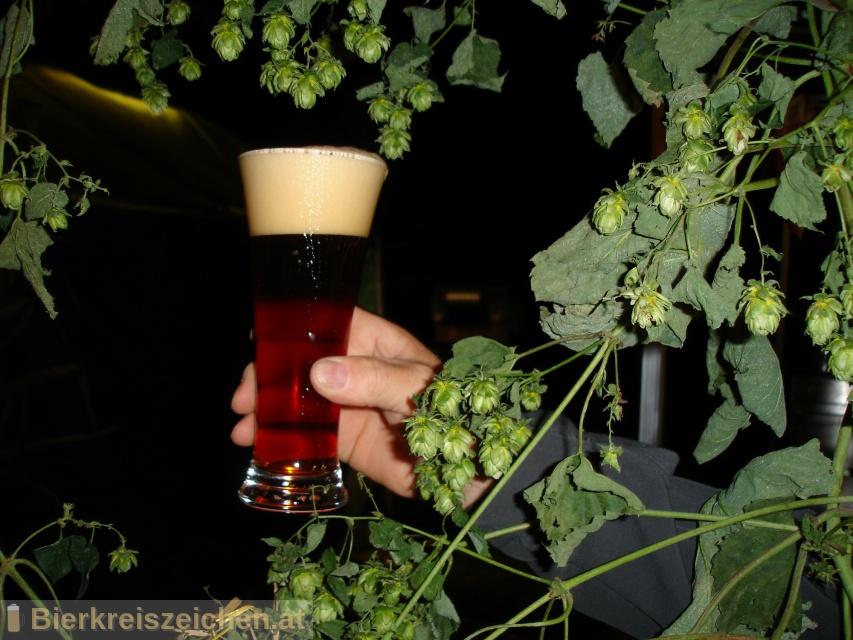 Foto eines Bieres der Marke Zeggern Bräu aus der Brauerei Brauerei Flamberger
