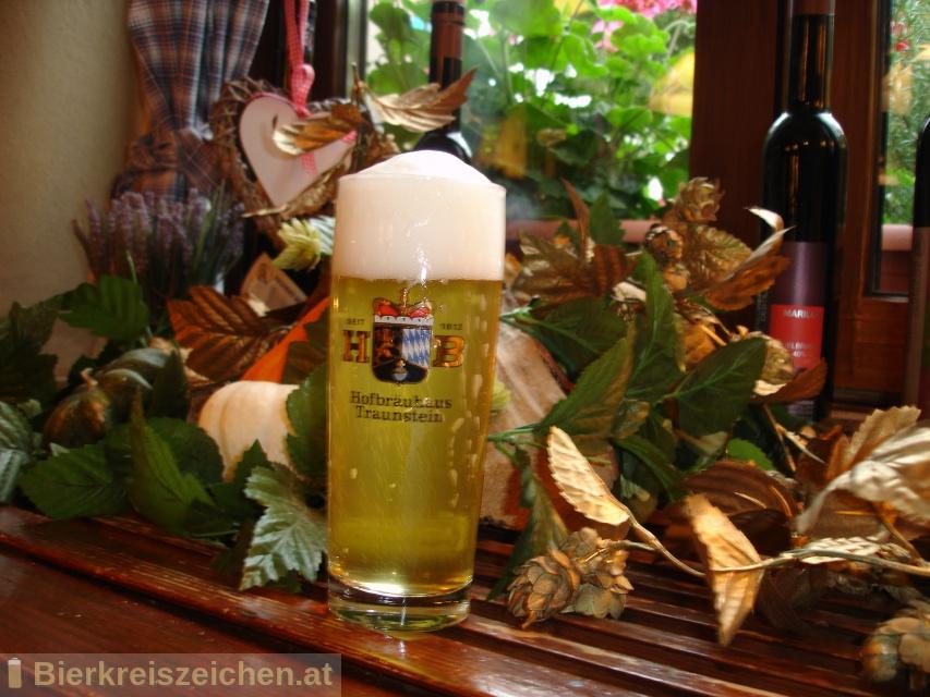 Foto eines Bieres der Marke Hofbräu 1612er Zwicklbier aus der Brauerei Hofbräuhaus Traunstein Josef Sailer KG