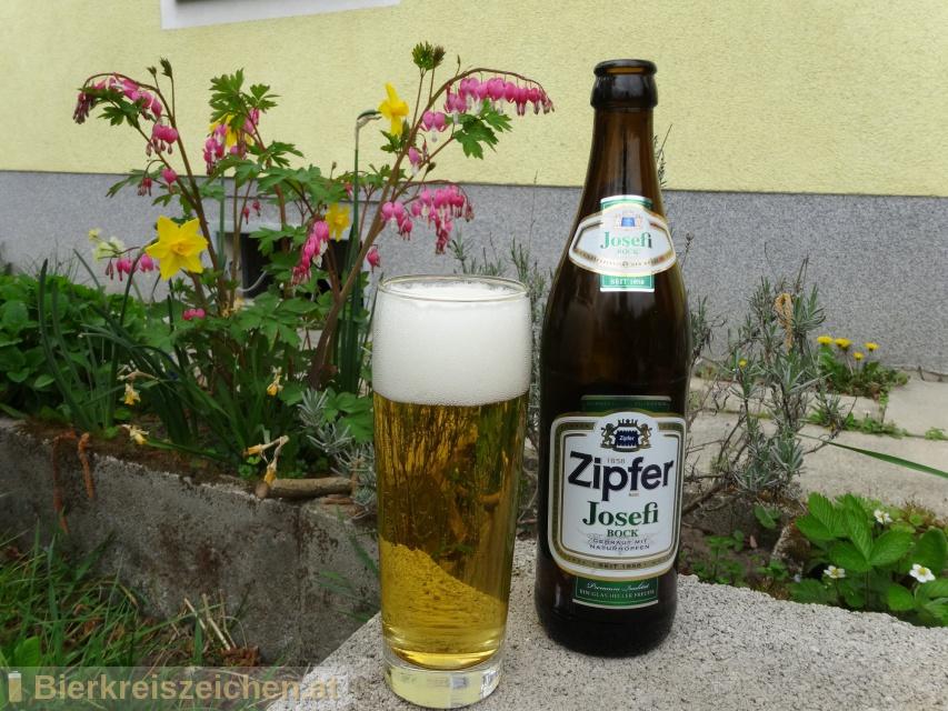 Foto eines Bieres der Marke Zipfer Josefi Bock aus der Brauerei Brauerei Zipf