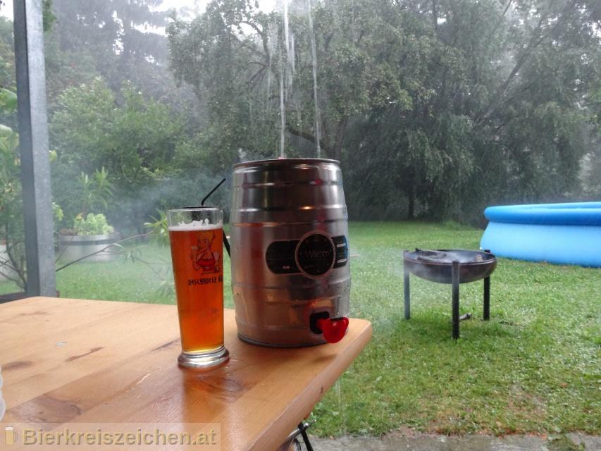 Foto eines Bieres der Marke 7Stern Märzen aus der Brauerei Siebenstern Bräu