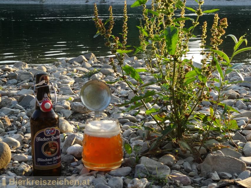 Foto eines Bieres der Marke Hacker Pschorr Münchner Kellerbier Anno 1417 aus der Brauerei Hacker-Pschorr