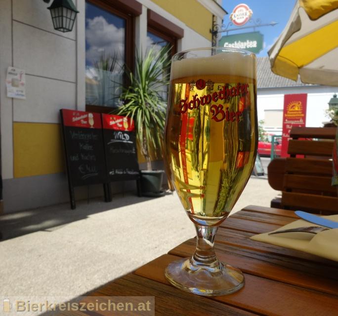 Foto eines Bieres der Marke Schwechater Bier aus der Brauerei Schwechater Brauerei