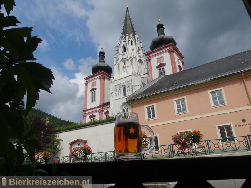 Foto eines Bieres der Marke Mariazeller Ochsenbräu aus der Brauerei Hofbräu Kaltenhausen