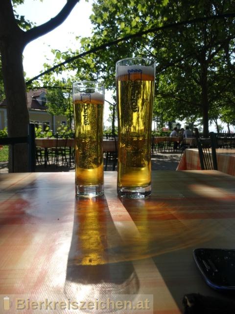 Foto eines Bieres der Marke Golser Märzen aus der Brauerei Pannonia Brauerei Gols