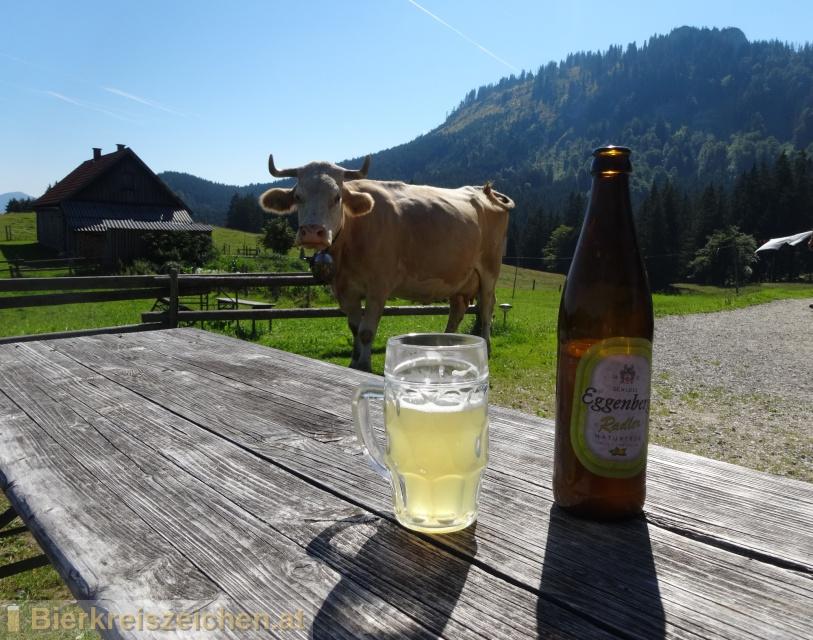 Foto eines Bieres der Marke Schloss Eggenberg - Radler aus der Brauerei Brauerei Schloss Eggenberg