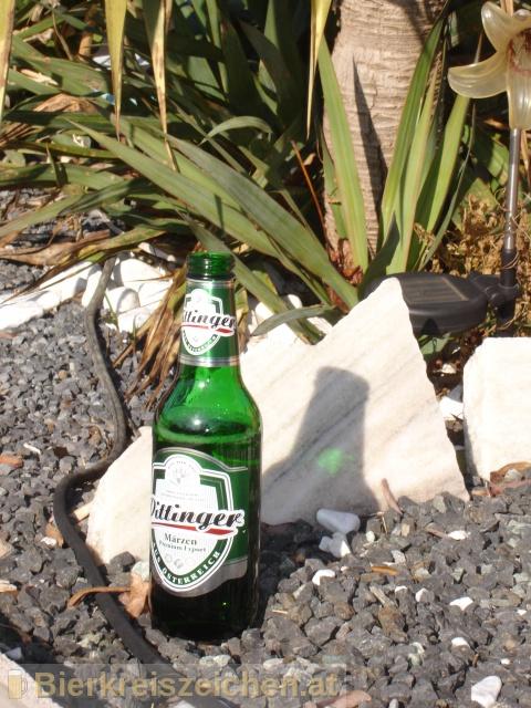Foto eines Bieres der Marke Pittinger Märzen aus der Brauerei Spar