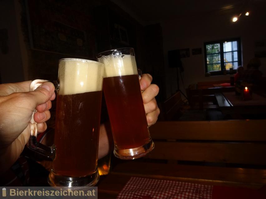 Foto eines Bieres der Marke Kürbisbier aus der Brauerei diebrauerei Leutschach GmbH