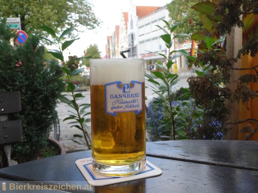 Foto eines Bieres der Marke Gansbräu hell aus der Brauerei Gansbräu