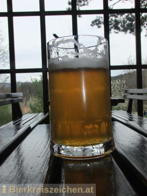 Foto eines Bieres der Marke Mahnič Pivo Svetlo aus der Brauerei Gostilna-Pivovarna Mahnič