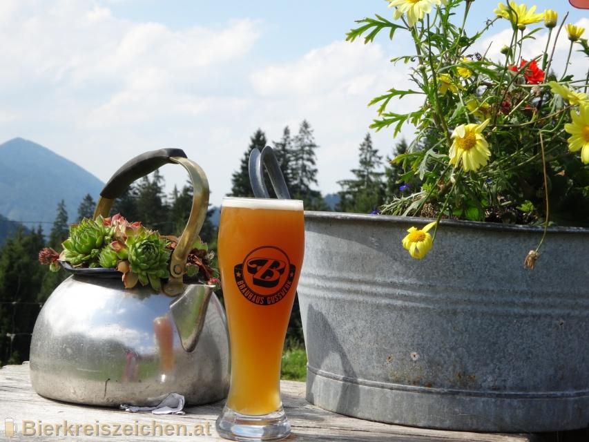 Foto eines Bieres der Marke Weizenguss aus der Brauerei Brauerei Gusswerk
