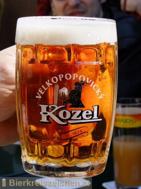 Foto eines Bieres der Marke Velkopopovický Kozel Pale (hell) aus der Brauerei Brauerei Popovice