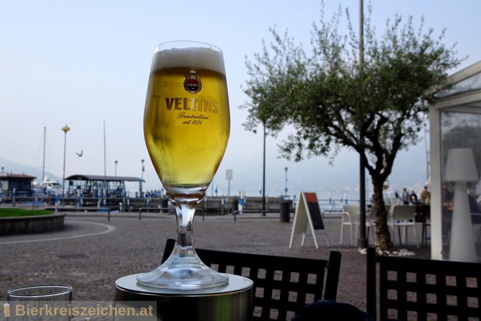 Foto eines Bieres der Marke Veltins Pilsener aus der Brauerei Veltins