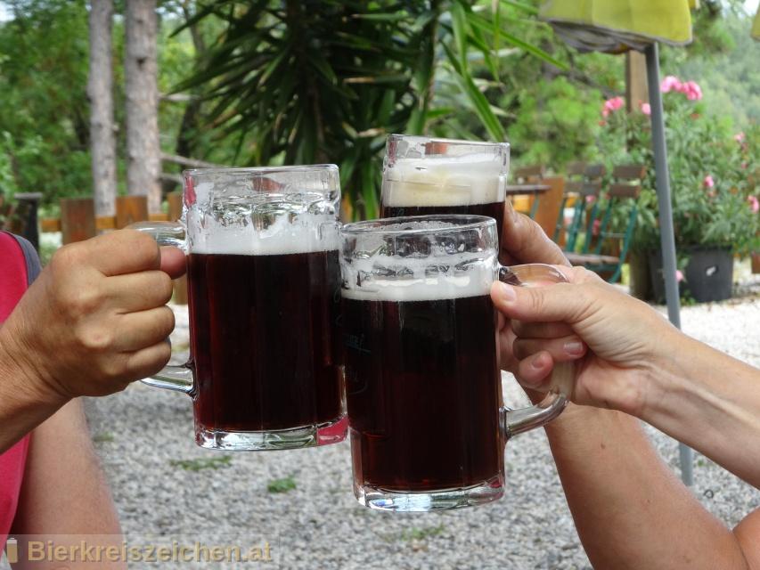 Foto eines Bieres der Marke Lumpazi Dunkles aus der Brauerei Brau Union