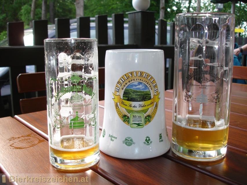 Foto eines Bieres der Marke Weinberger Roggenbier halbdunkel aus der Brauerei Schloßbrauerei Weinberg