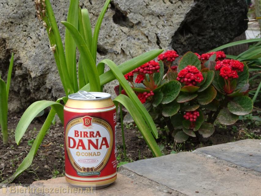 Foto eines Bieres der Marke Birra Dana aus der Brauerei Birra Castello