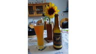 Bild von Weizen-Bier